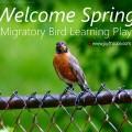 Migratory Bird Learning Play Joy Makin' Mamas