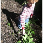 Kid's Garden (plus lesson resources)