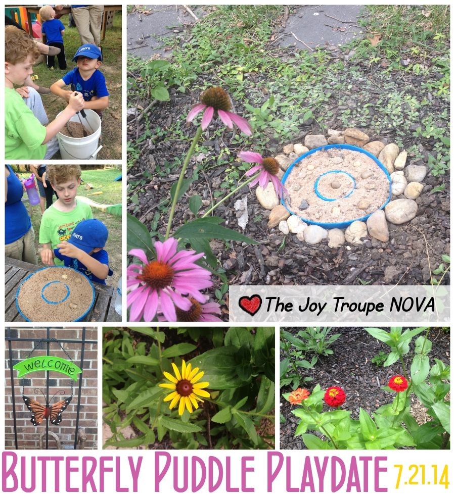 butterfly puddle playdate