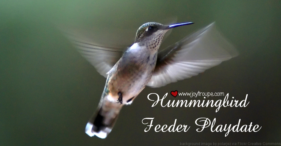 hummingbird feeder playdate wide