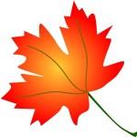 Autumn Leaves Playdate