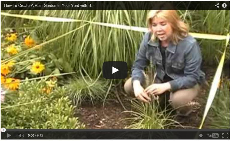 how to rain garden video