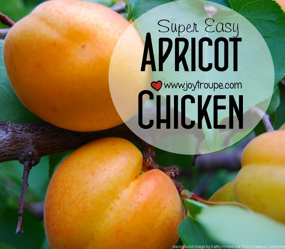 Super Easy Apricot Chicken Recipe