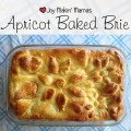 apricot baked brie feautred image
