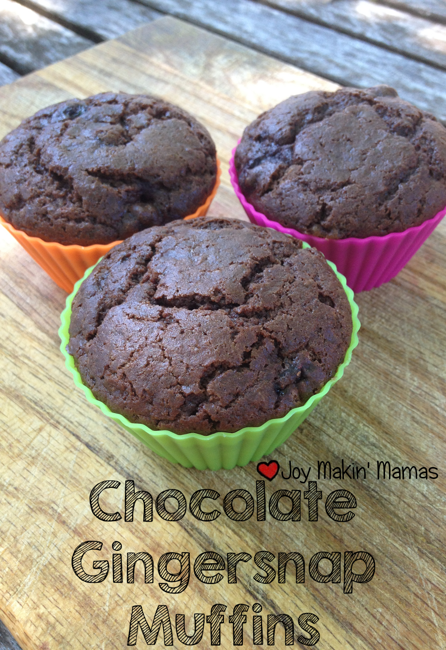 chocolate gingersnap muffin recipe