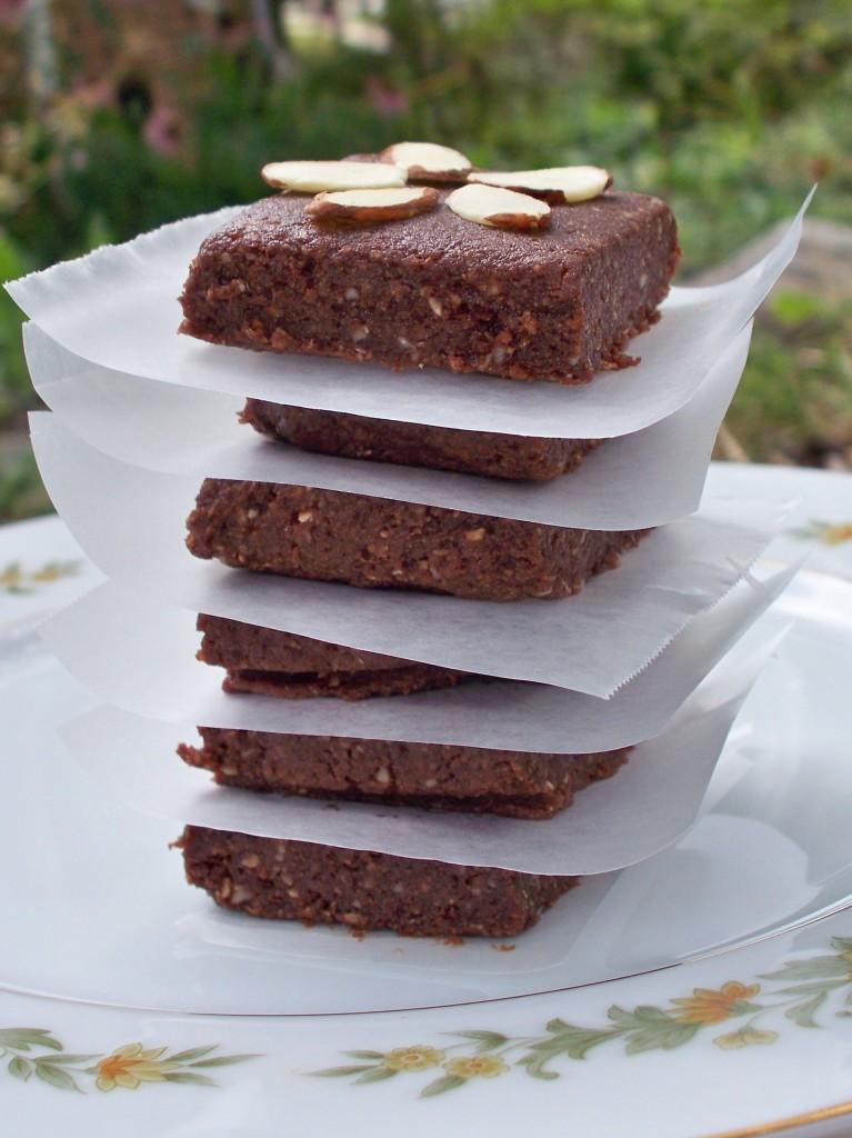 no bake sea salt brownie protein bars vegan peanut free recipe Joy Makin Mamas