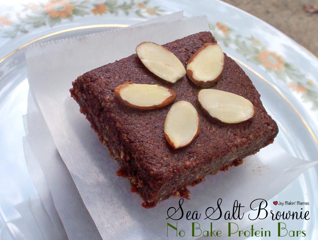 sea salt brownie no bake protein bars recipe vegan peanut free