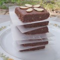 sea salt brownie protein bars vegan no bake peanut free