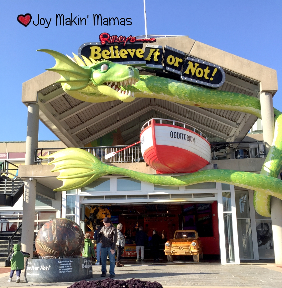 Ripley's Believe It Or Not Odditorium Baltimore Sidewalk View Joy Makin' Mamas Review